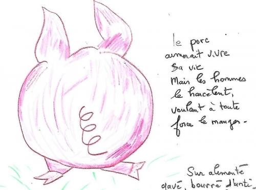 porc (5).jpg