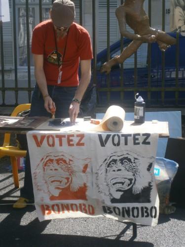 votezbonobo.jpg